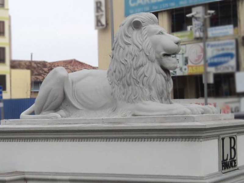 lion-kollupitiya-baratha-kumara